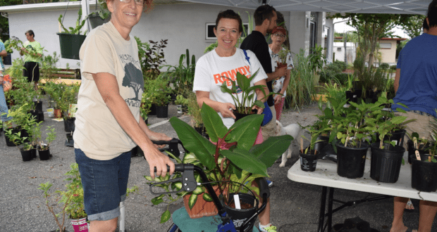 Annette Malloy, left, a member of Historic Kenwood's Garden Workshop, helps a shopper with her purchases at the neighborhood's 12th annual fundraising plant sale at the Bula Kafé on Saturday, October 15. Malloy, who uses a walker for balance issues, said she figured she could put it to good work helping folks transport their plants. Proceeds go to local charities that help children and families.