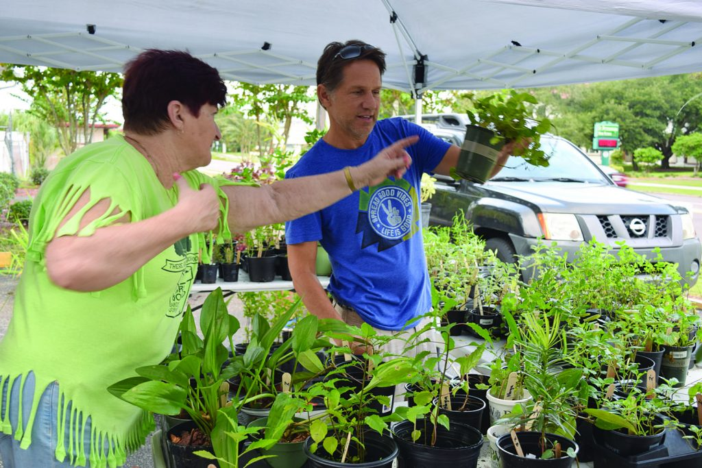 "Sue Heyen, left, a member of Historic Kenwood's Garden Workshop, helps a customer at the neighborhood's 12th annual fundraising plant sale at the Bula Kafé on Saturday, October 15. ""We grow them ourselves in our yards,"" Heyen said. ""We grow them all year for the next sale."" Proceeds go to local charities that help children and families."