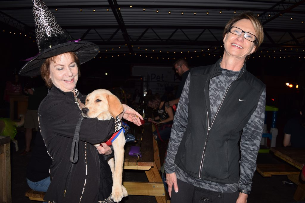 "Linda Allen, right, of Seminole, laughs as her friend Tricia Nuckols holds a 3-month-old golden retriever in training by the Southeastern Guide Dogs during the sixth annual Party for the Paws Saturday, October 22, at Cage Brewing Co. in St. Petersburg. The event, which celebrated Halloween and the fall season, was a fundraiser for the Pet Pal Animal Shelter and included a doggie costume contest, raffles, food, drink, vendors and activities for kids. The laid-back dog, simply called Puppy since she hadn't been formally named yet, was wearing a costume. ""She's Wonder Woman or Super Girl, I'm not sure which,"" said Allen, a Southeastern Guide Dogs volunteer."
