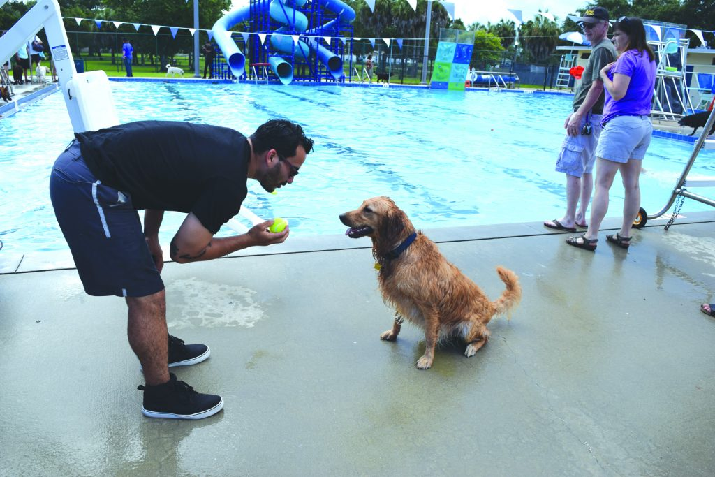 "Yariel Moyet of Brandon gives his 1-year-old golden retriever Charley a pep talk as he tries to get him to go in the pool. ""He lover the water,"" Moyet said. ""He's afraid to jump in, but he loves to fall in."" Seconds later Charley decided he'd rather go play with other dogs and ran off, leaving Moyet alone holding the ball."