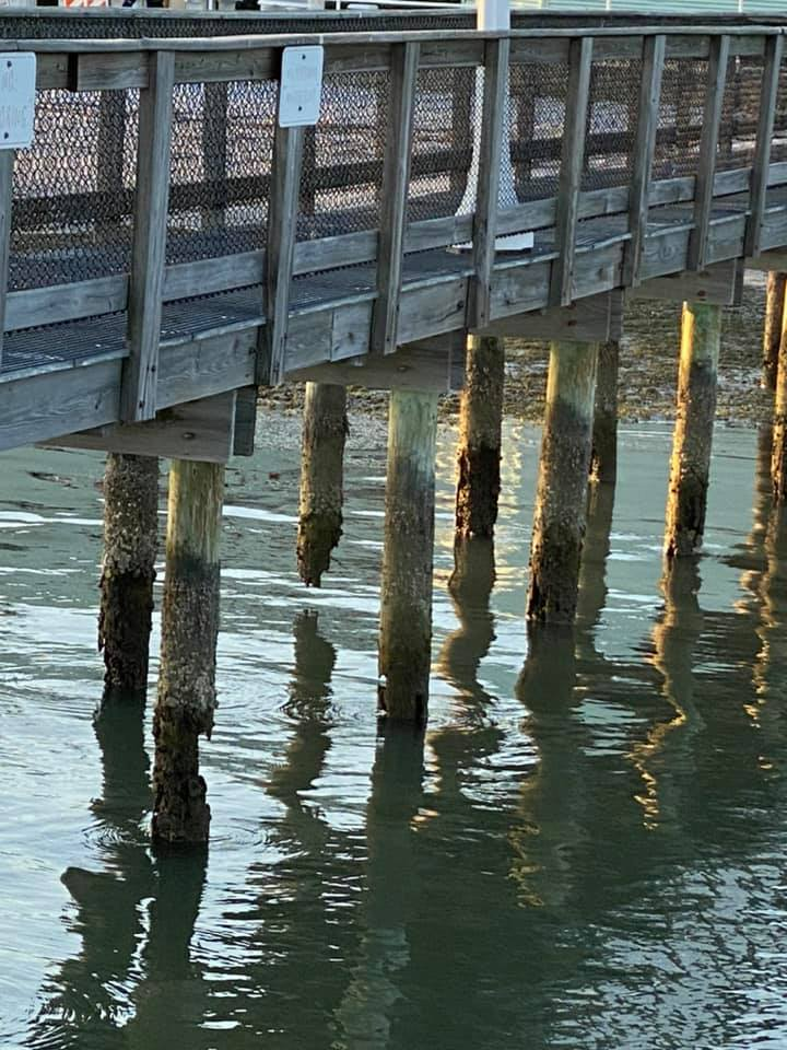 On Monday, May 11, Gulfport resident Kerry Burke took photos of eroded Gulfport Casino dock pilings, some showing large gaps, and posted them to Facebook. Photo courtesy of Kerry Burke