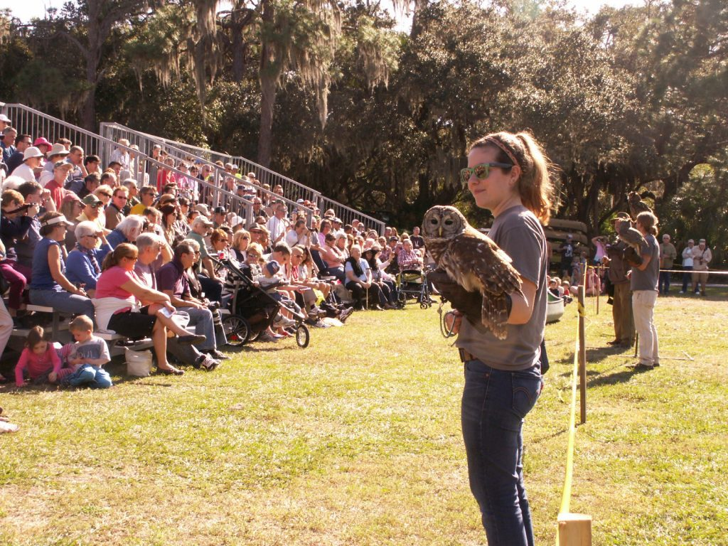 Morgan Barrios of Orlando, a ranger at the Boyd Hill Nature preserve, displays a barred owl during an owl demonstration at the Raptor Fest.